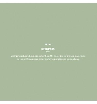 evergreen - Esmalte Valacryl - Green - 2019