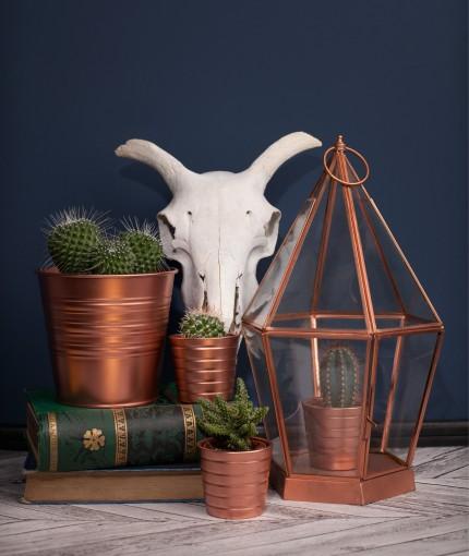 Bright-Copper-Plant-Pots-430x510.jpg
