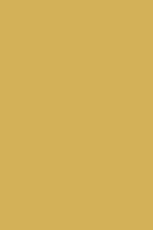 Sudbury Yellow - Farrow & Ball