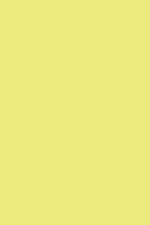 Yellowcake - Farrow & Ball